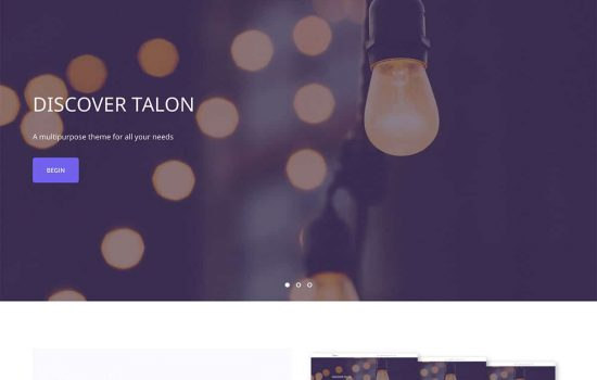 talon-wordpress-theme